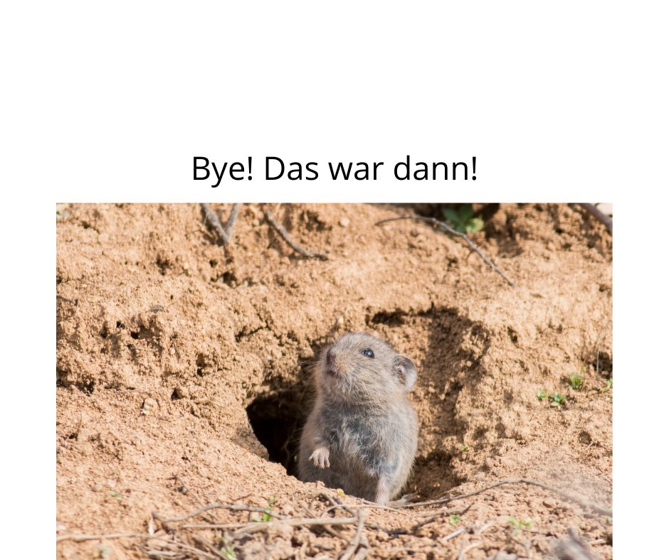 Bye! Das war dann!